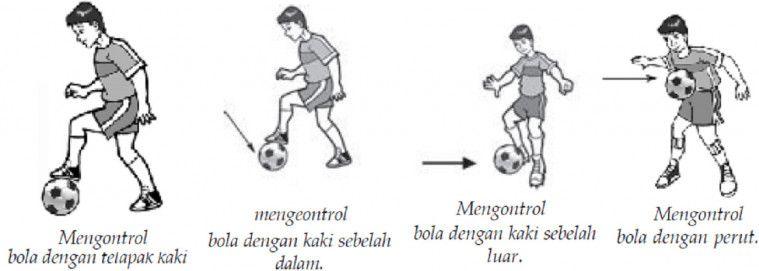 Mengontrol dan Menghentikan Bola