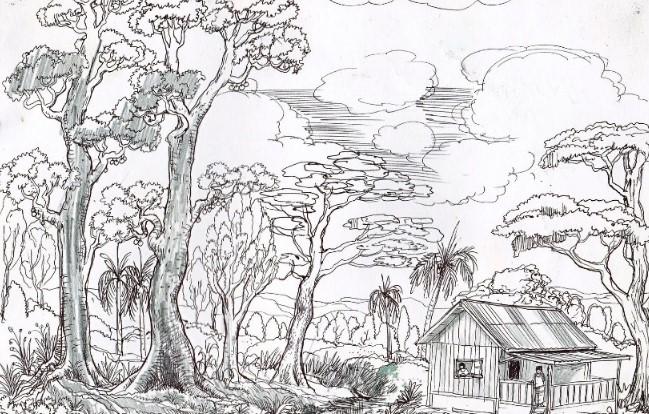 Sketsa Gambar Hutan Sederhana