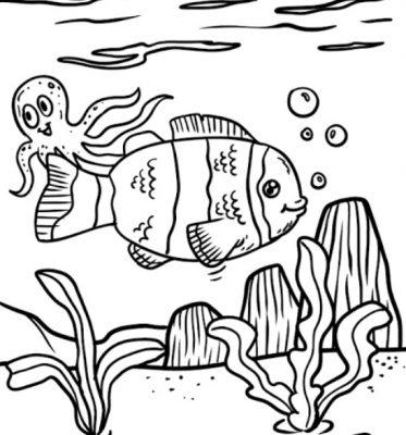 Ikan Sketsa Radea