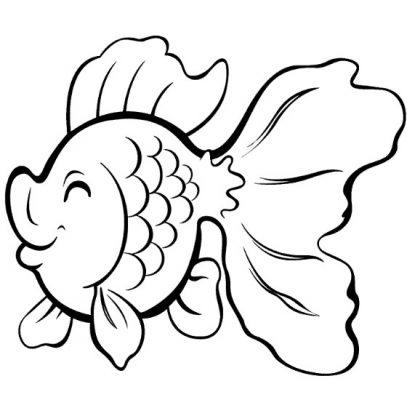 Sketsa Gambar Ikan Koki