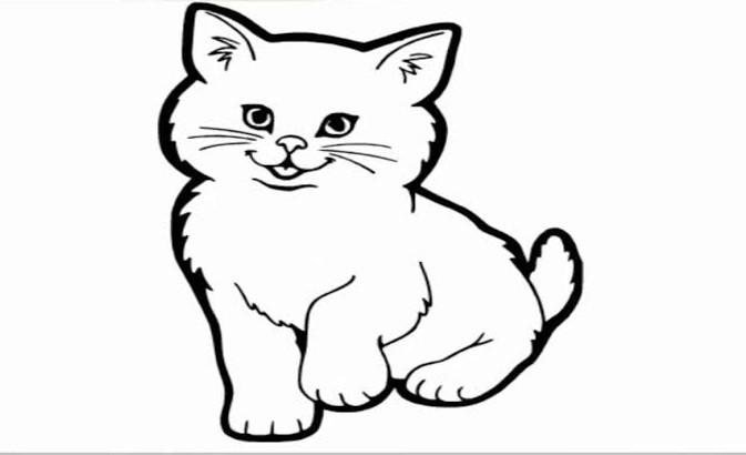 Sketsa Hewan Kucing